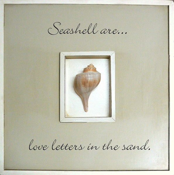 Framed seashell art