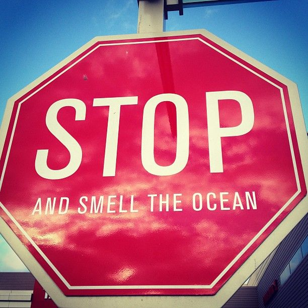 A Curated Life: Stop and Smell the Ocean
